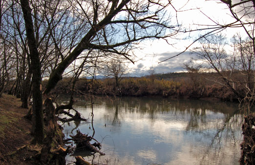 lpigeon_river1.jpg