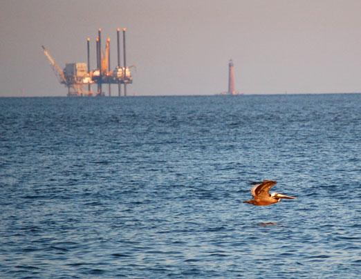 pelican_rig-lthouse1b.jpg