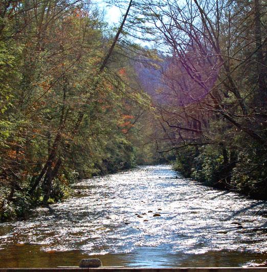 Davidson_River1b.jpg