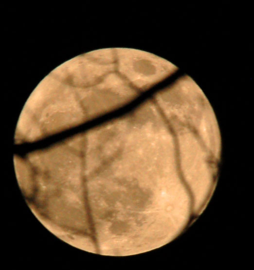 super_moon2012bb.jpg