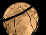 super_moon2012cb
