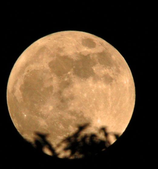 super_moon2012db.jpg