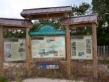 Bon Secour Beach 10