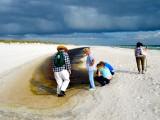 Bon Secour Beach 5