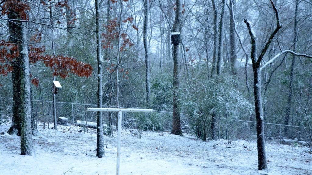 Snow1_2013g