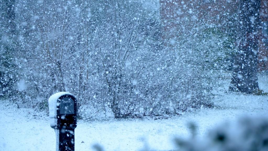 Snow1_2013h