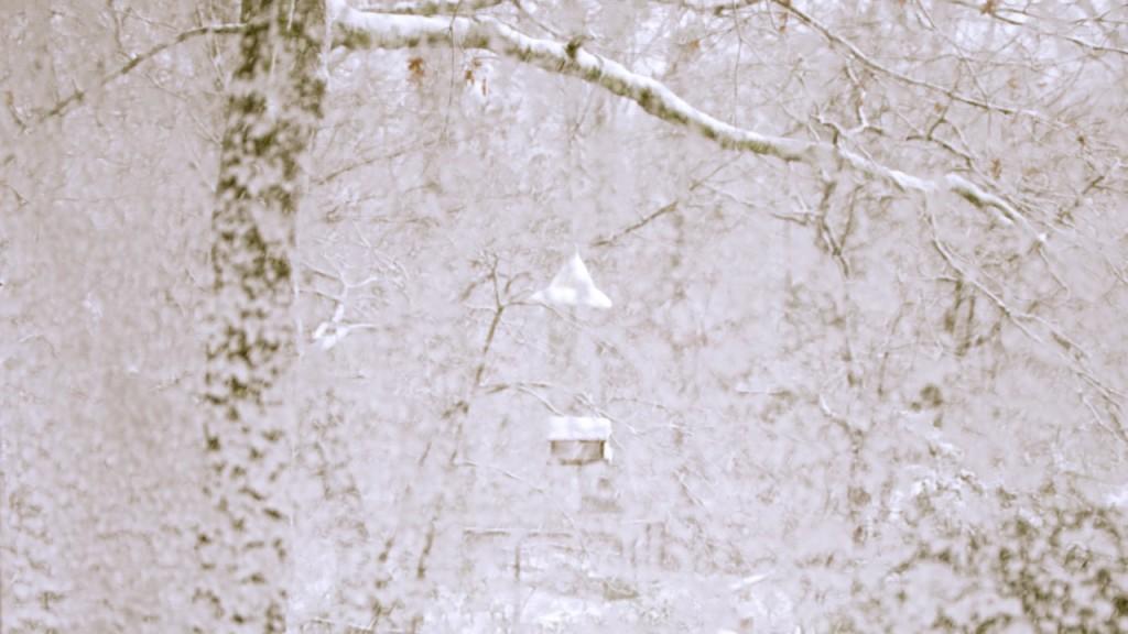 Snow1_2013i