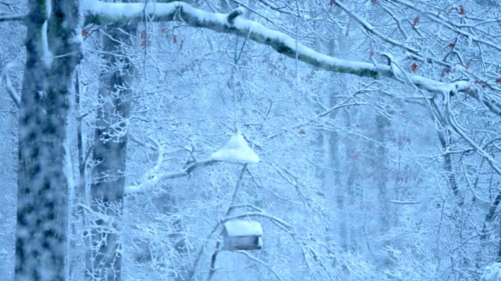 Snow1_2013o