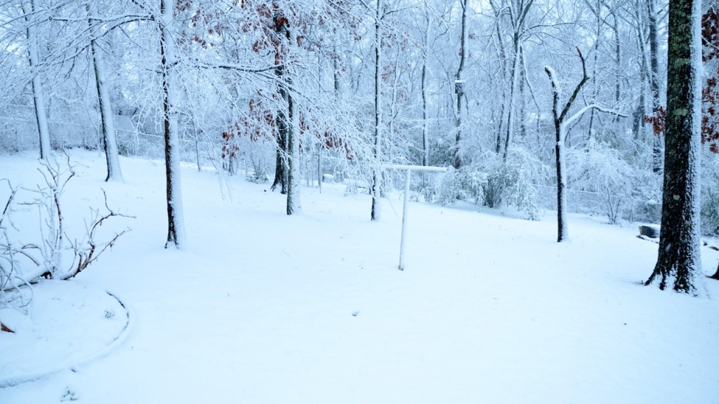 Snow1_2013r