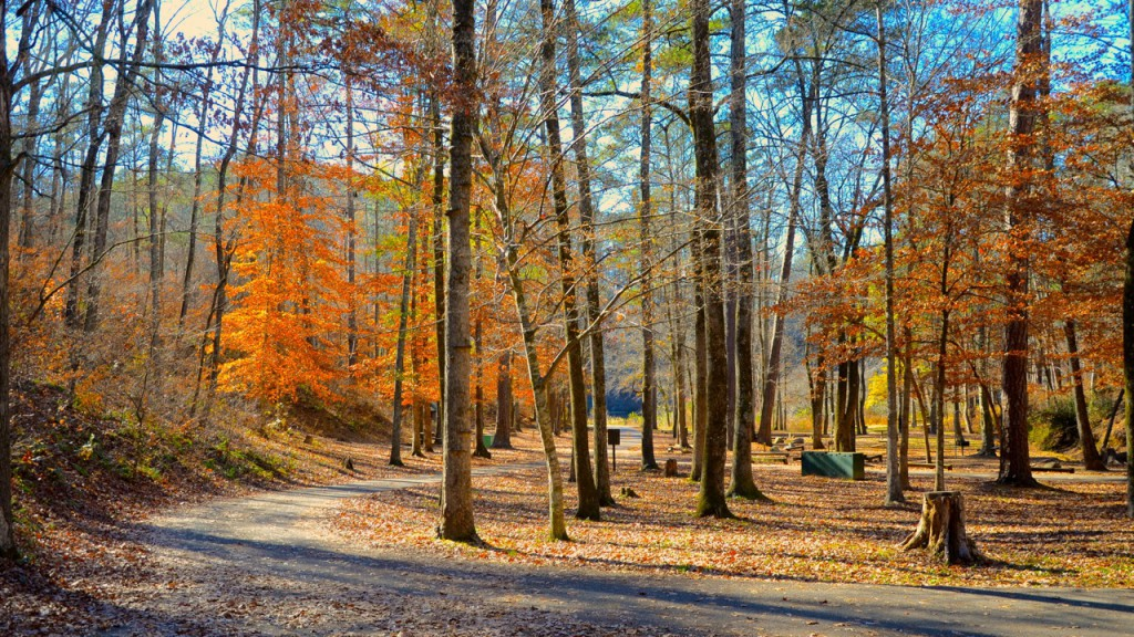 The U.S. Forest Service Lake Chinnabee Campground in Autumn, in the heart of the fracking zone