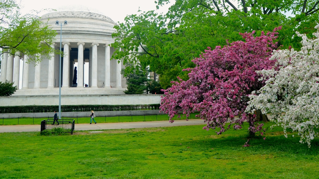 Photo Essay: An April Walking Tour of Washington D.C.