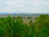 A Future Fracking Zone? Looking out over the national forest from the Talladega Scenic Drive toward Mt. Cheaha, the highest peak in Alabama's Appalachian Mountains off in the distance (click on the images for a larger view) -