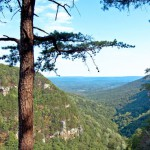 Secret Vistas: Cloudland Canyon State Park