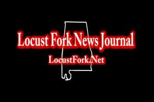 LocustFork.NetGraphic1