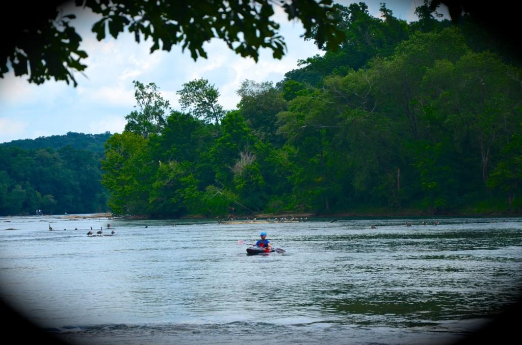 Chattahoochee_River7-28-13g