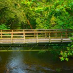 Labor Day Feature Photos from Tannehill State Park