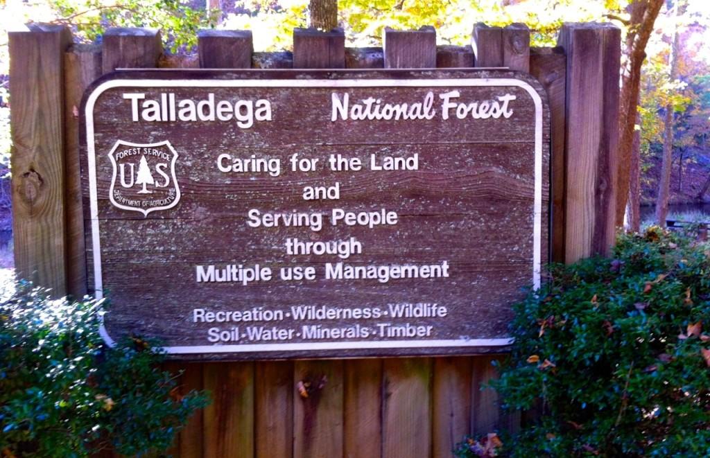 TalladegaNationalForest1
