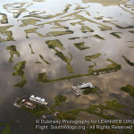 Poll Shows Residents Favor Oil Companies Paying for Damages to Louisiana Wetlands