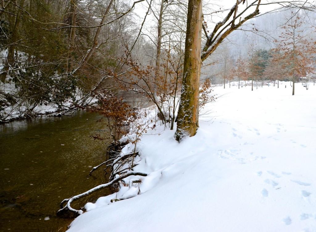 rp_HungryMother_snow21514a1-1024x752.jpg